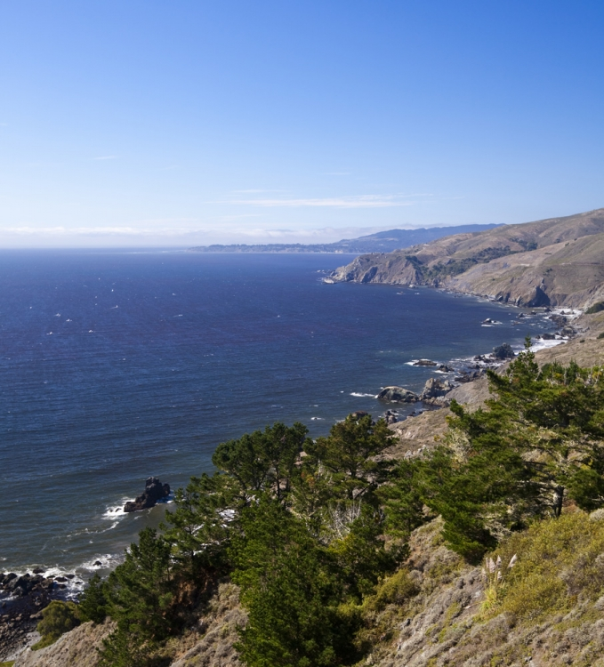 Looking north toward Bolinas from the Owl Trail