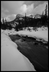 Goat Creek with the Kananaskas Range in the background