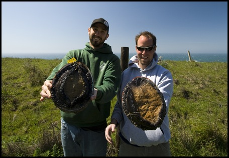 The widest (mine) and heaviest (Paul's) abalone for the day