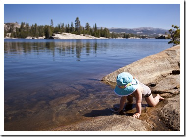 Lilia enjoying the shoreline at Utica Reservoir