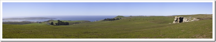 Elephant Rock and Tomales Point