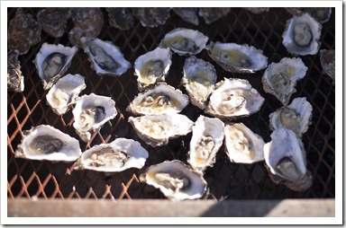 Superbowl Oysters