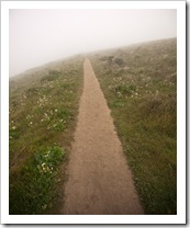 The trail through the fog to Tomales Point